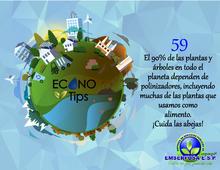 ECONOTIP 59