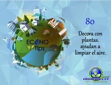 ECONOTIP 80